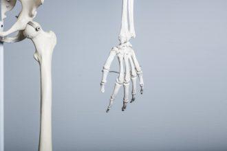 骨や歯の栄養・・・だけじゃない!身体全体を整えるカルシウム。