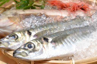 切り身で簡単♪魚料理でDHA/EPAをとろう。