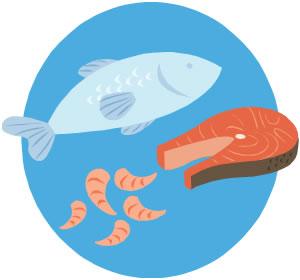 鮭の酢漬(常備食)
