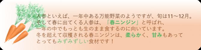 人参ドレッシング